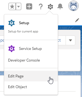 launch context - lightning page -user context